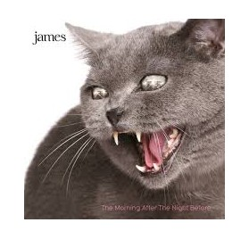 James - The Morning After The Night Before (2CDs)